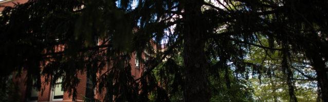 lumen photography, carleton college engagement photos, minnesota, adventurous, edwin, loren, northfield engagement session